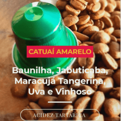 Cápsula de Café Especial (D. Ucha) Catuaí Amarelo